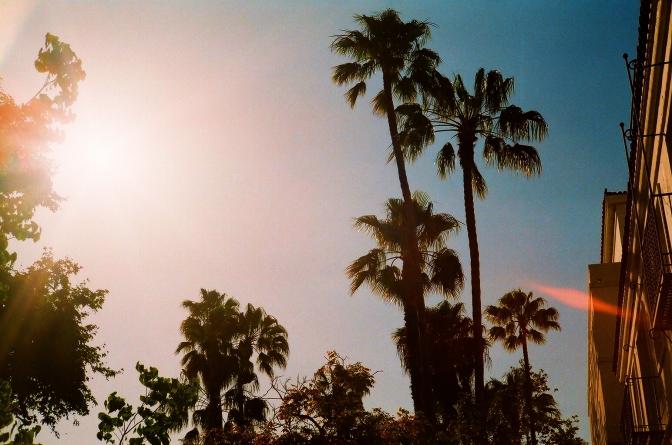 Amerikan Riviera'sı : Santa Barbara