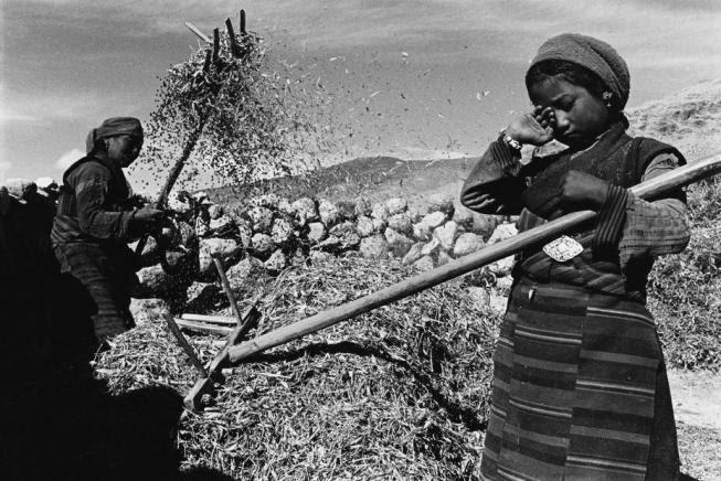 Emek, Açlık, Yoksulluk ve Ahmak Kapitalistler