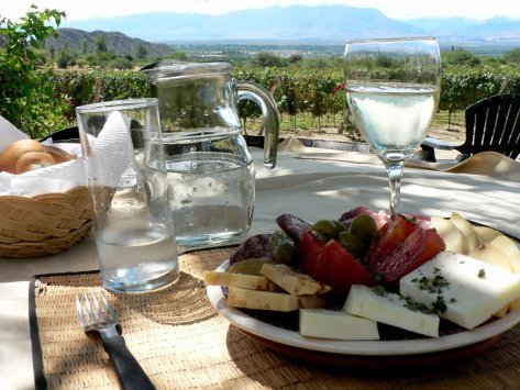 stroll-through-the-vineyards-of-mendoza-in-argentina-known-for-its-incredibly-diverse-wine-production-here-you-can-sample-award-winning-malbecs-in-a-breathtaking-setting