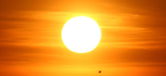 UV Işınlarına karşı korunmada hangi yiyecek yardım eder?
